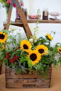 blog-sunflowers